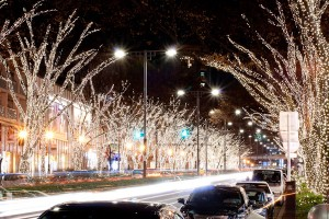 Omotesando's Illuminations and a bunch of cars.