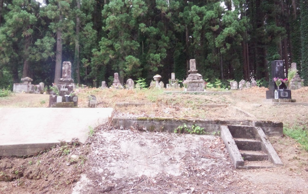 The cemetery. She Who Must Be Obeyed's family shrine is above the concrete slab on the left.